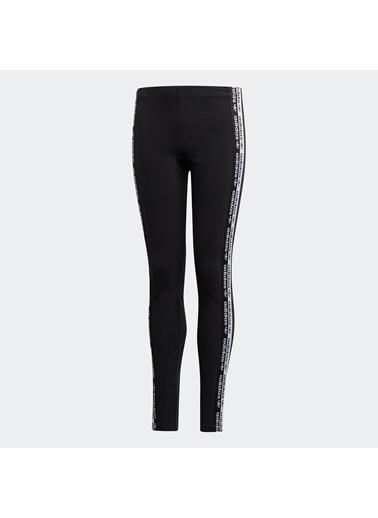 adidas Adidas Leggıngs Kadın Tayt Siyah